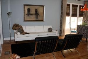 Leopard Choice